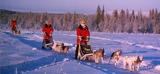 Reise-Winter-Finnland-Husky-Expedition-2018.jpg, 5kB
